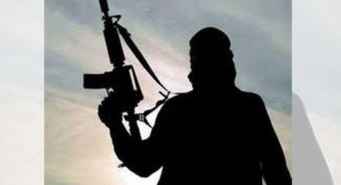 Two naxals killed in encounter with Maharashtra Police